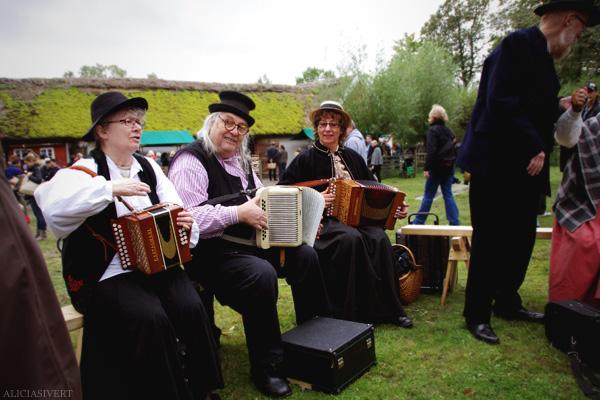 aliciasivert, alicia sivertsson, skansen, skansens höstmarknad, market, autumn, dragspel, musiker, musicians, music, musik, instrument