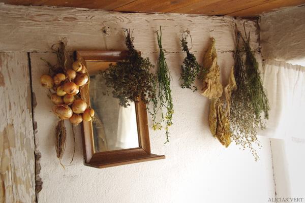 aliciasivert, alicia sivertsson, skansen, skansens höstmarknad, market, autumn, herbs, örter