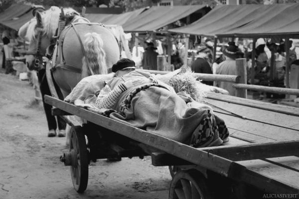 aliciasivert, alicia sivertsson, skansen, skansens höstmarknad, market, autumn, utklädd, utklädnad, dressed up, sleeping, sover, häst och vagn, horse, carriage