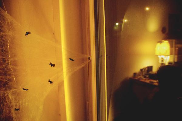 aliciasivert, alicia sivertsson, harry potter halloween party, fest, spindlar, spiders