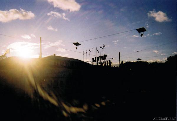 aliciasivert, alicia sivertsson, analog photography, djurgården, djurgarden, sweden, house, building, light, leaves, ljus, lövverk, löv, hus, byggnad, analog, analogt fotografi, engångskamera, cirkus