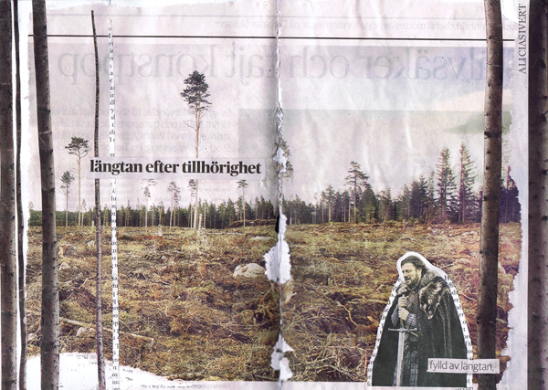 aliciasivert, alicia sivertsson, collage, boromir, längtan efter tillhörighet, longing for belonging, trees, träd, kalhygge