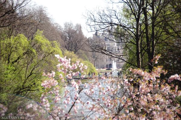 aliciasivert, alicia sivertsson, london, england, St. james's park, spring, vår