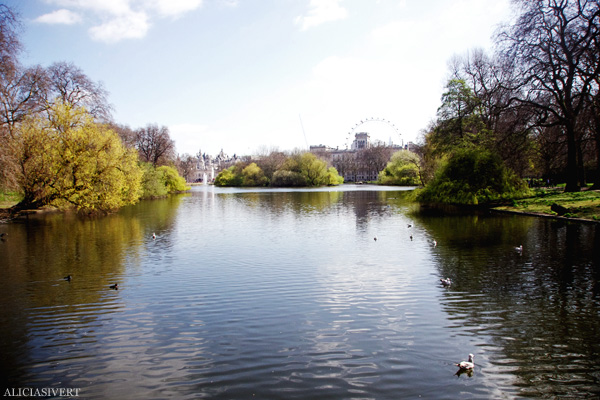 aliciasivert, alicia sivertsson, london, england, St. james's park, london eye