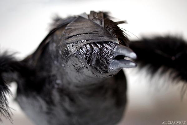 aliciasivert, alicia sivert, alicia sivertsson, kråka, fågel, modell, bird, crow, gips, fjädrar, feathers, diy, skapande, kreativitet, alster och makeri, sanchez