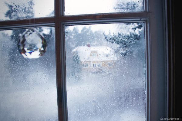 aliciasivert, alicia sivertsson, jul, mys, fönster, frost, snö, prisma