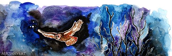 aliciasivert, alicia sivert, alicia sivertsson, aquarelle, akvarell, painting, målning, watercolor, watercolour, water color, colour, owl, uggla, kattuggla, ugglevandring djurgården, stockholms ornitologiska förening