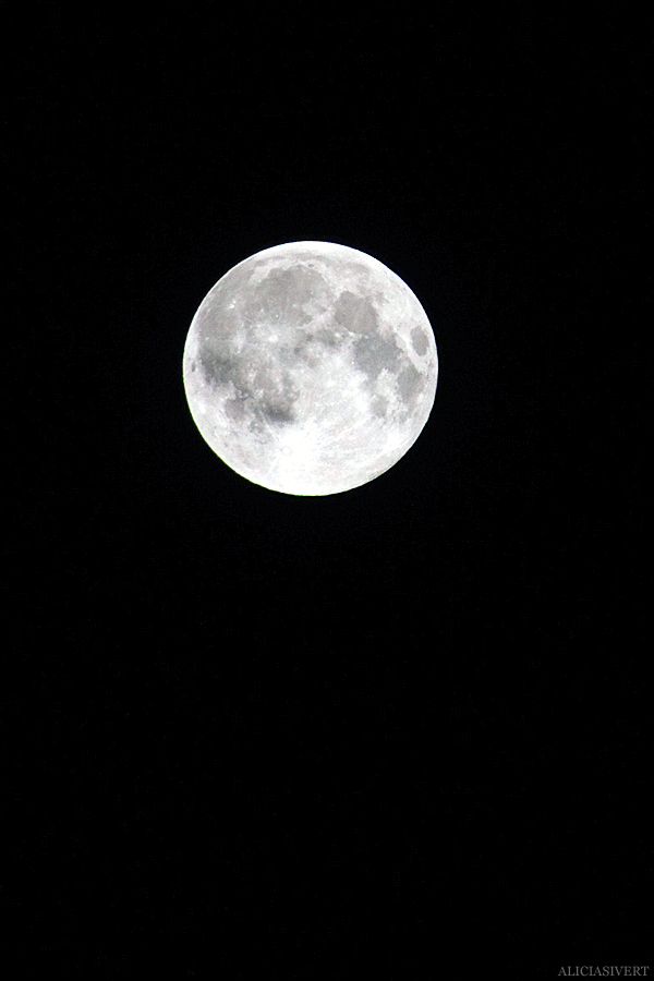 aliciasivert, alicia sivertsson, alicia sivert, fullmåne, måne, megamåne, supermåne, full moon, super moon, night, sky, stockholm, natt, himmel