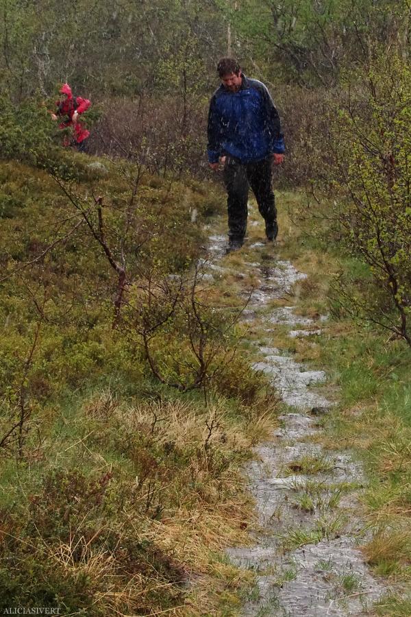 aliciasivert, alicia sivertsson, alicia sivert, fjällvandring, vandra i fjäll, fjällen, fjällvandra, vemdalen, vemdalsskalet, hike, hiking in sweden, härjedalen, norrland, sverige, varggranshågna