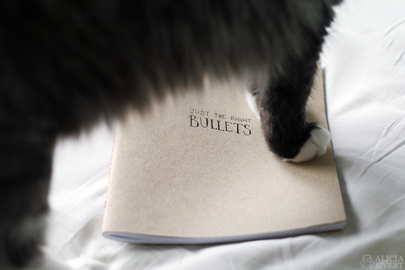 aliciasivert alicia sivertsson sivert bullet journal