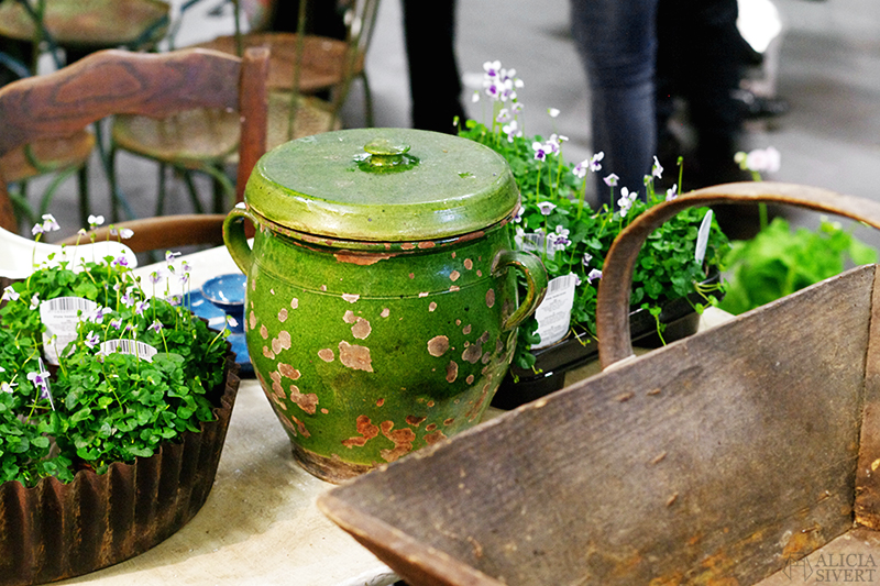 aliciasivert alicia sivert sivertsson trädgårdsmässa stockholmsmässan mässa mässan trädgård trädgårdar odling balkong kruka krukor krukväxt krukväxter odla blommor älvsjö inspiration utställning monter butik urna