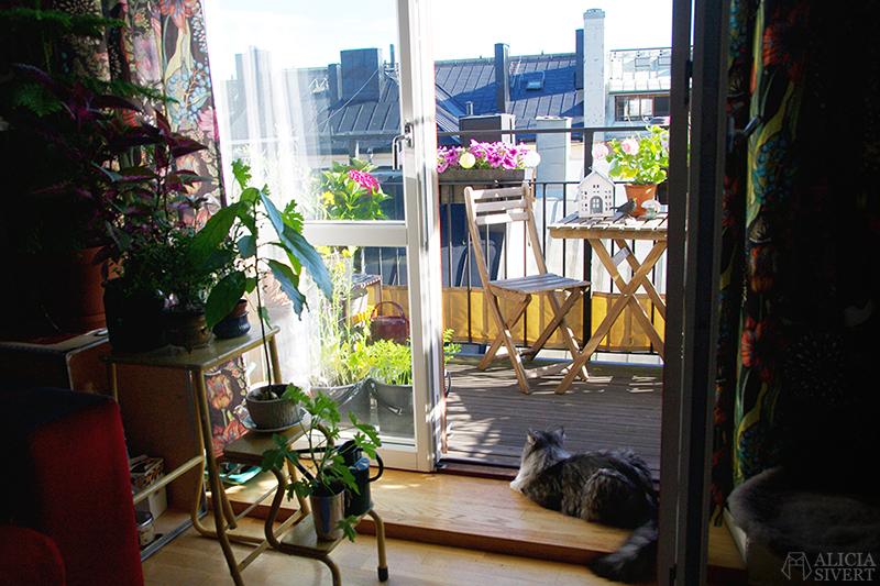 aliciasivert alicia sivert sivertsson odla på balkong balkongodling odling trädgård inspiration inreda inredning kruka krukor det norske hageselskap hage på balkongen
