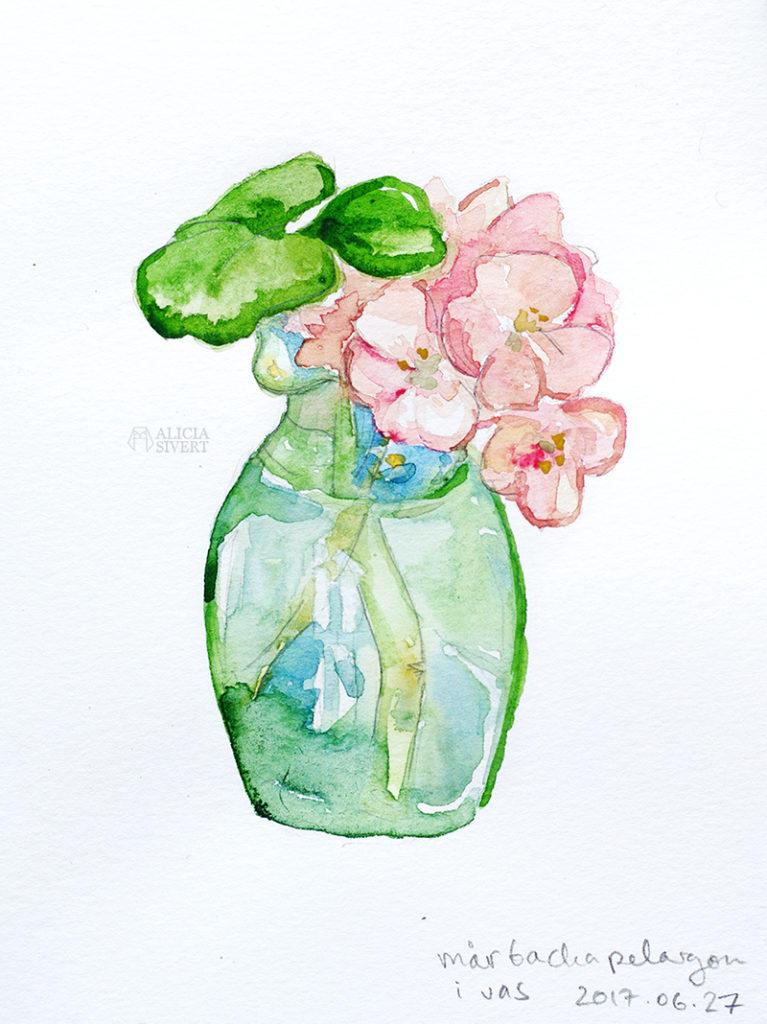 aliciasivert alicia sivert sivertsson måla målning akvarell aquarelle watercolor watercolour vattenfärg painting mårbacka mårbackapelargon pelargon
