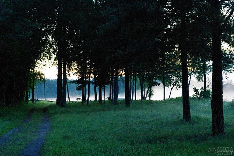 uttersberg dimma fog dusk skymning sommarkväll sommarnatt kväll sjö badplats