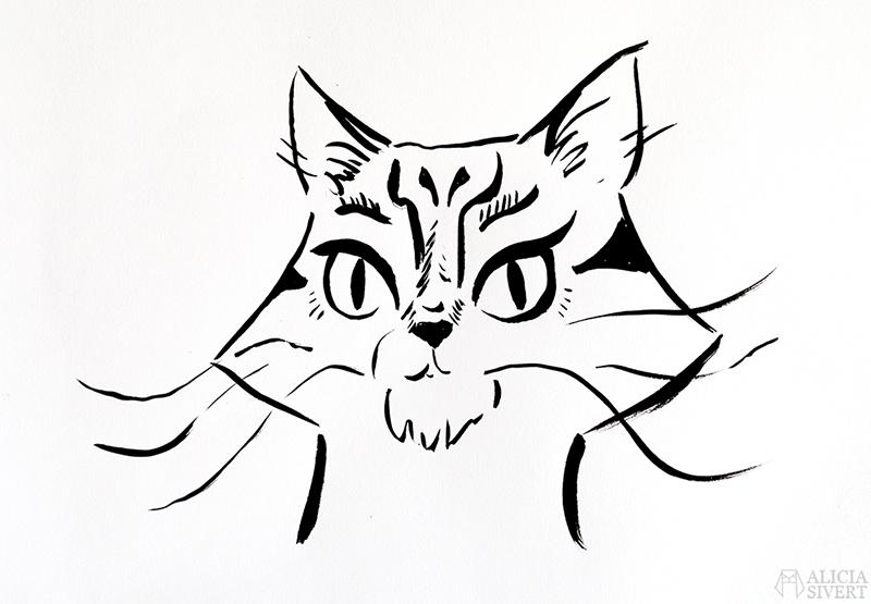 alicia sivert sivertsson aliciasivert konst konstverk teckning teckningar drawing drawings art tusch ink bläck kreativitet skapa skapande katt cat portrait porträtt skiss studie katten vifslan