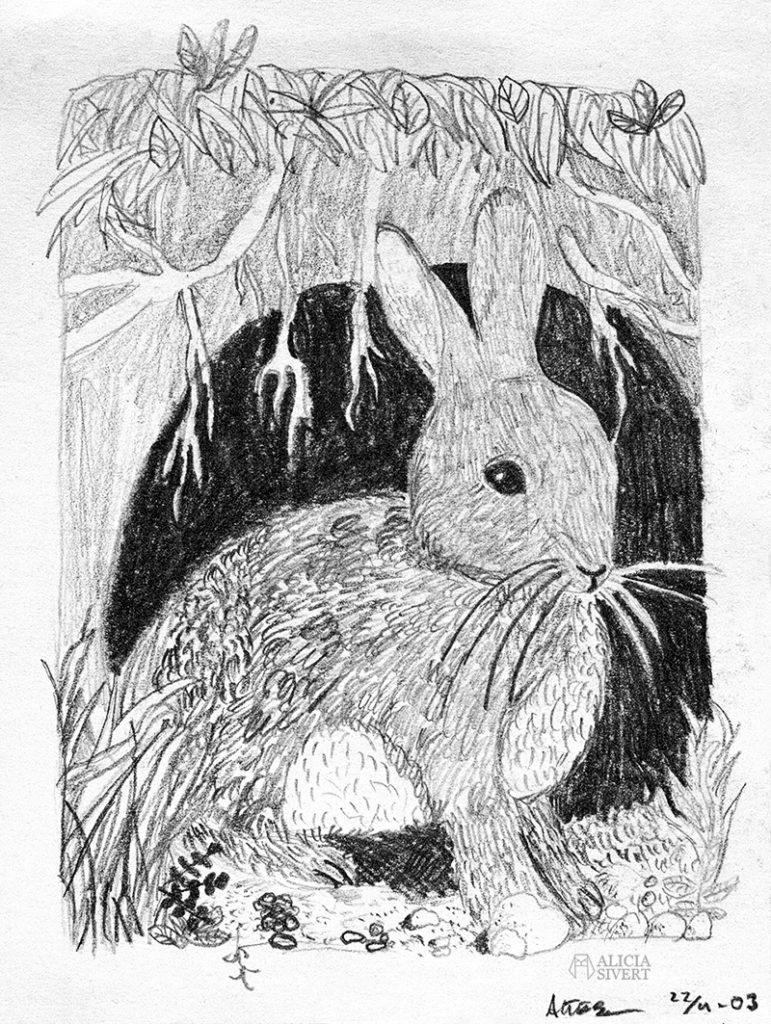 teckna teckning rita lära sig mig dig lär barn skapande utveckling kreativitet i barndomen vuxen vuxna blyerts hare kanin 12-åring tolvåring 13-åring trettonåring 13 år 12