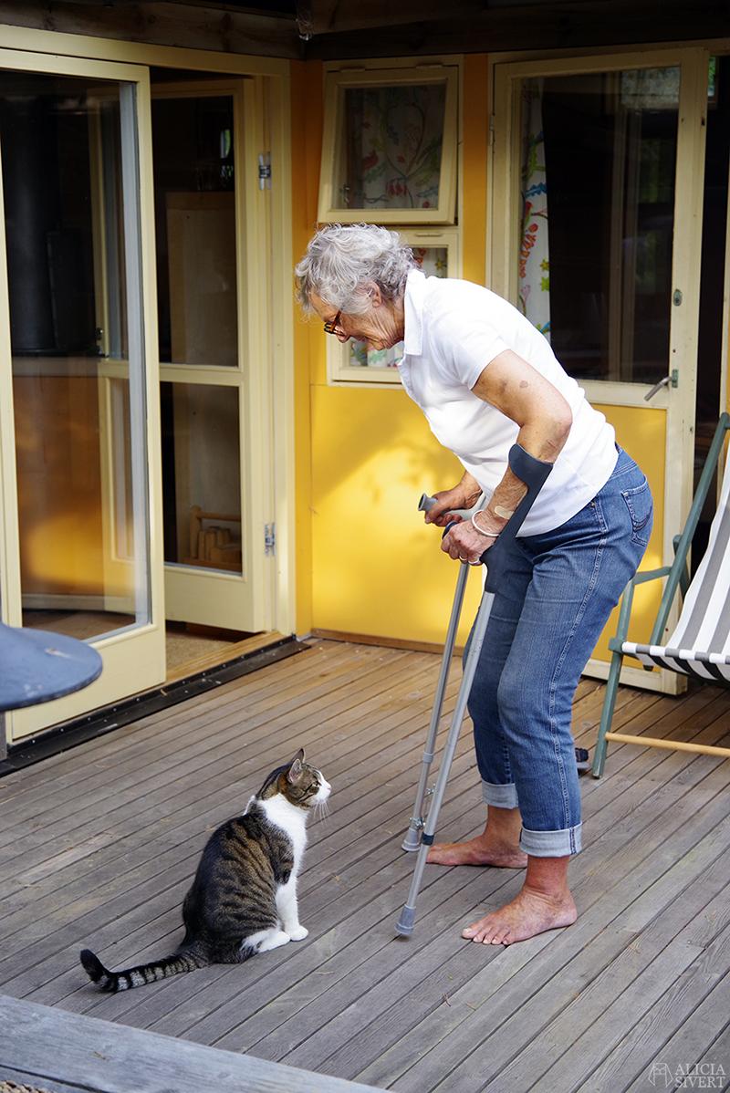 mormor kryckor katt aliciasivert.se