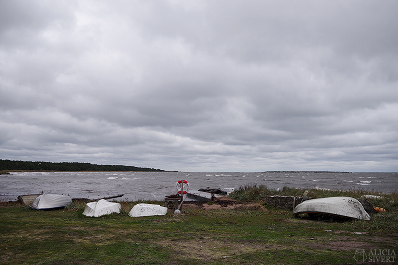 Höst på södra Gotland. Foto av Alicia Sivertsson. Alicia sivert aliciasivert aliciasivert.se sudret storsudret nore norebod fiskeläge fiskebod fiskebodar båt båtar brygga