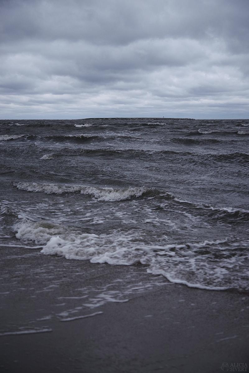 Höst på södra Gotland. Foto av Alicia Sivertsson. Alicia sivert aliciasivert aliciasivert.se sudret storsudret nore havet austre heligholmen norebod fiskeläge