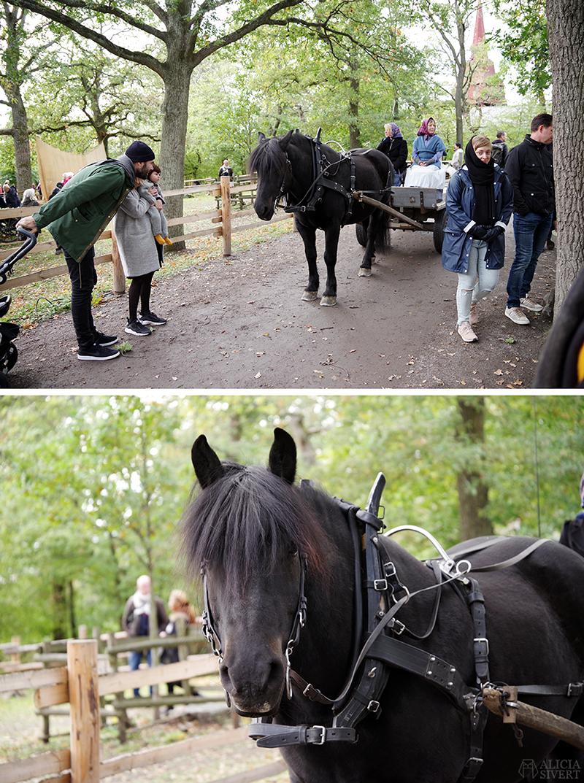 Skansens höstmarknad 2018, Skansen, marknad, höst, 1900-tal, sekelskifte, häst och vagn