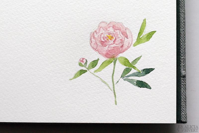 Mormors bok - handbunden bok med illustrationer i akvarell, av Alicia Sivertsson - www.aliciasivert.se / Rosa pion