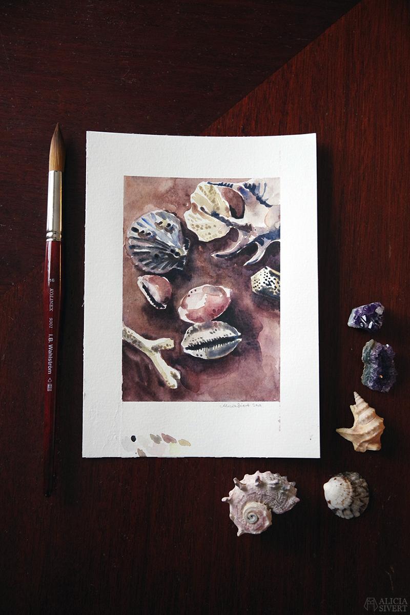 Akvarell av snäckor och strandfynd av Alicia Sivertsson, baserad på ett foto av Joré/jdfoto // Tre akvareller från bloggvärlden, av Alicia Sivertsson - www.aliciasivert.se