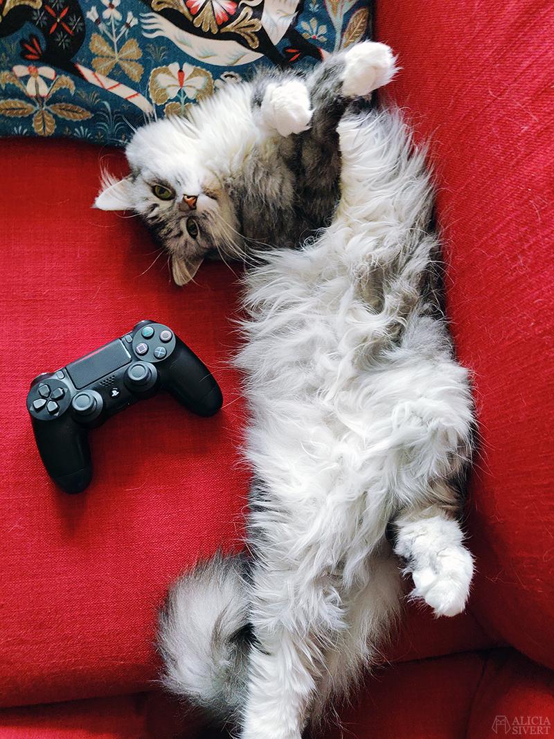 Mars är - www.aliciasivert.se // katten Tofslan playstation-kontroll