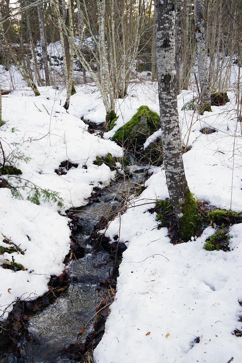 Ösbyrundan, Gustavsberg - www.aliciasivert.se // vårvinter promenad vandring runt Ösby träsk