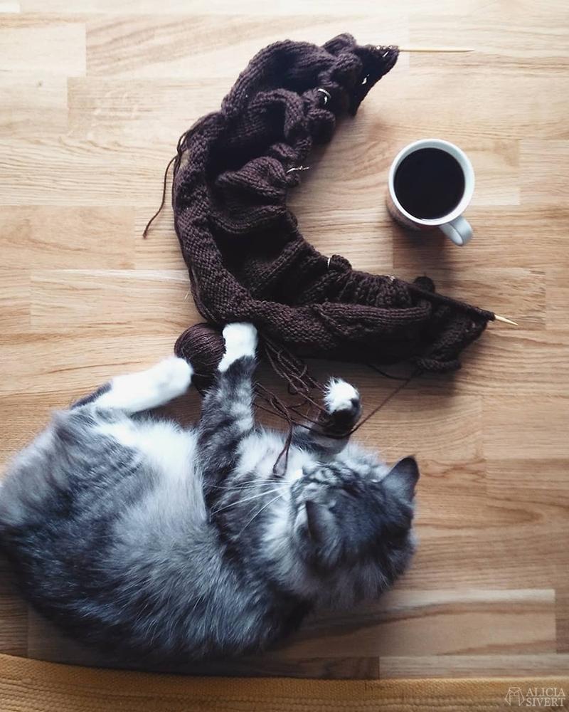 Stickning och katten Vifslan av Alicia Sivertsson - www.aliciasivert.se // Mars förra året