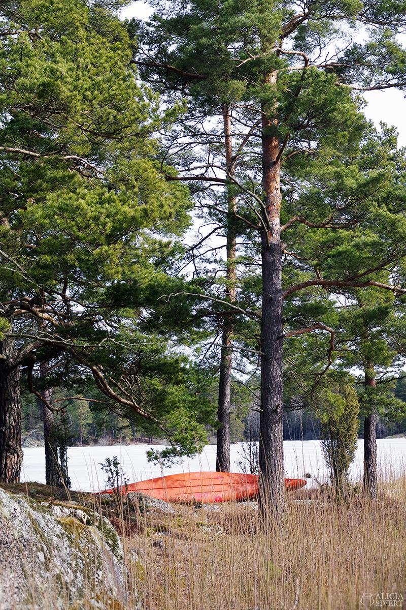 April förra året, promenad runt Kvarnsjön, Gustavsberg - www.aliciasivert.se