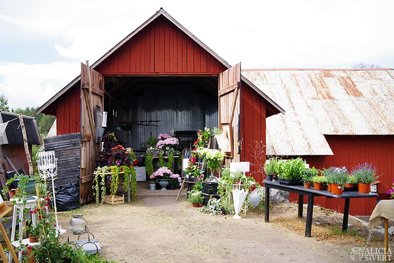 Nora gård på Värmdö - www.aliciasivert.se // värmdötips gårdsbutik loppis café fik fika natur idyll skärgården skärgård att göra i på utflykt utflytksmål besöka besök blomsterloge