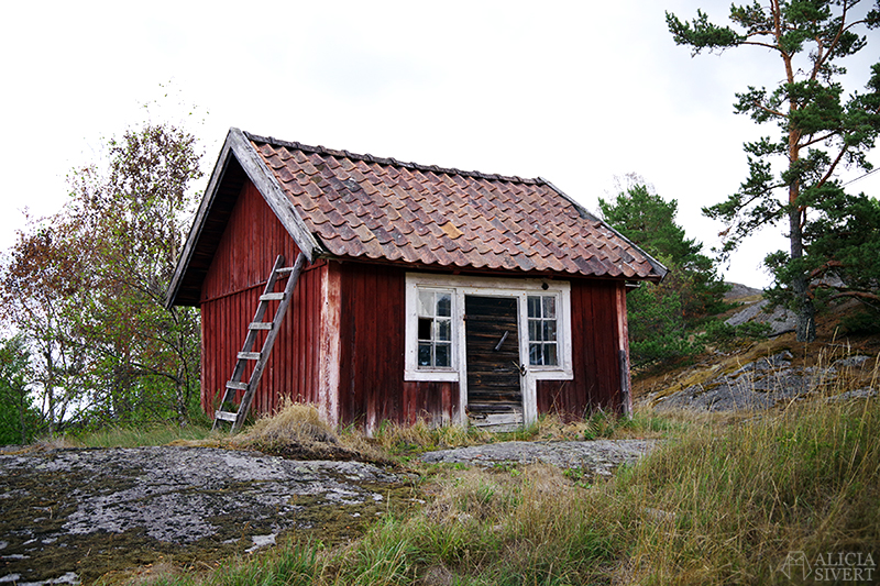 Nora gård på Värmdö - www.aliciasivert.se // värmdötips gårdsbutik loppis café fik fika natur idyll skärgården skärgård att göra i på utflykt utflytksmål besöka besök svinhuset stuga med stege svinhus stall