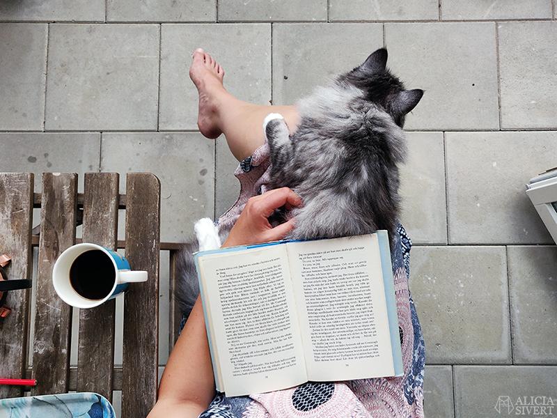 Läsa med katt - www.aliciasivert.se
