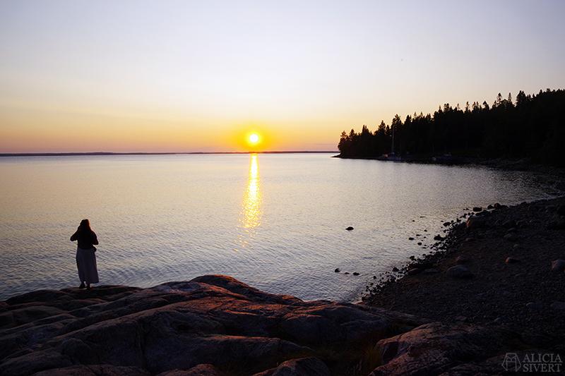 Västerdrottningen Thea i solnedgången - www.aliciasivert.se