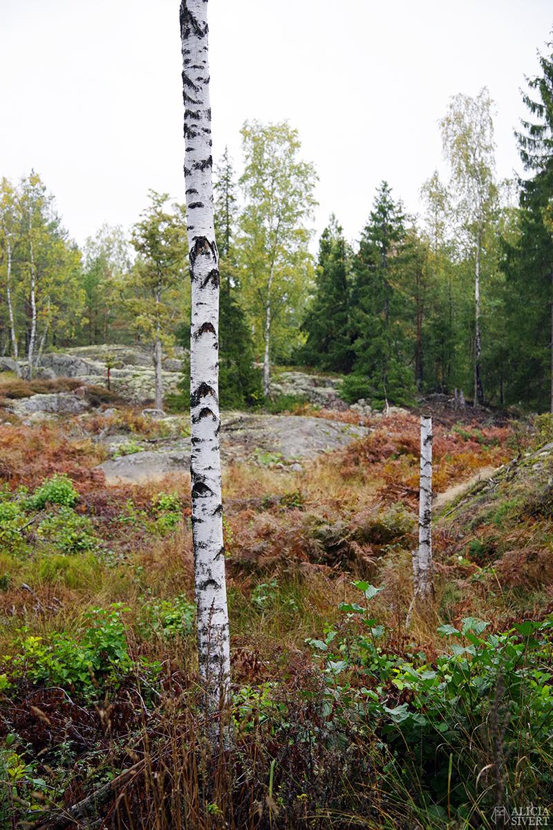 Promenad, september i Gustavsberg - www.aliciasivert.se