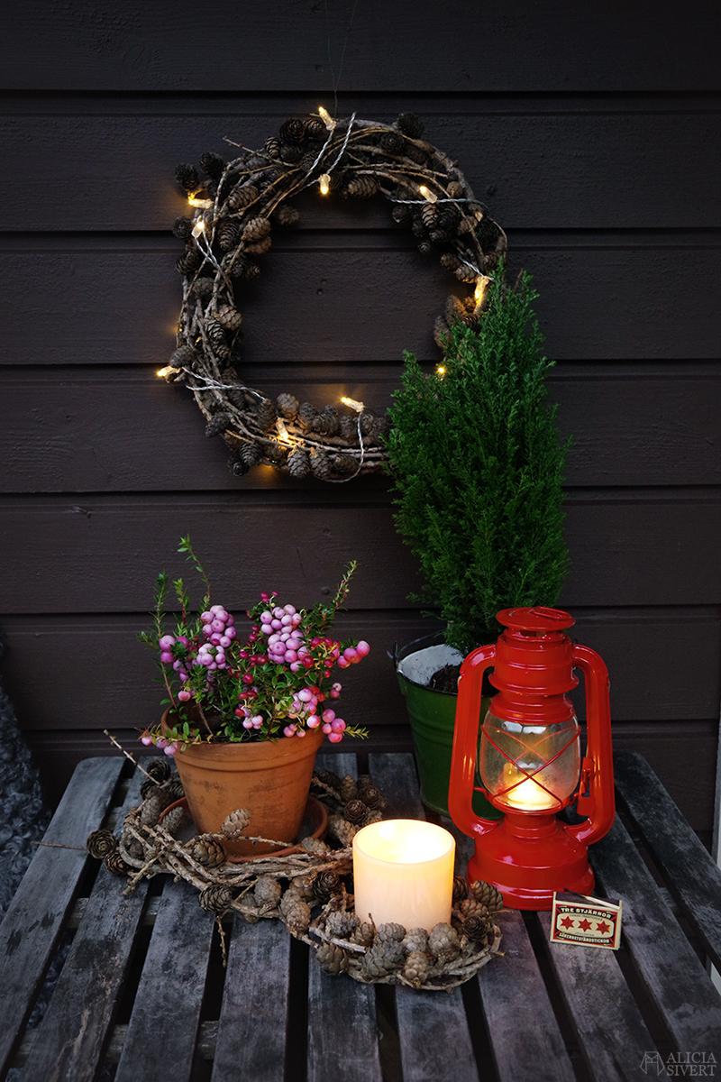 DIY Krans av lärk - bind kransar utan stomme eller ståltråd! Steg för steg-beskrivning med video och tips, av Alicia Sivertsson - www.aliciasivert.se / binda kransbindning lärkkrans do it yourself jul julpynt hållbar jul hållbarhet handgjort handgjord jul skapa skapande julpyssel stämning utomhus altan balkong pynta ljus ljuslykta