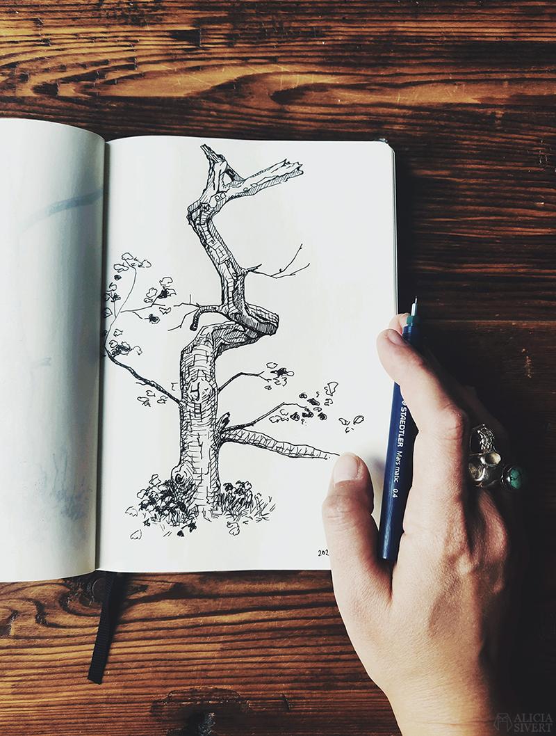 Träd teckning - www.aliciasivert.se // teckning trädteckning teckningar döda träd gamla ihåliga knotiga illustration bläck tusch svartvit svartvitt staedtler mars matic 0,4 rita skissa alicia sivertsson