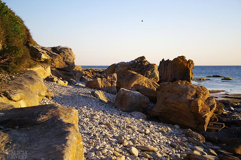 Raukar i solnedgång, vid Hoburgens strand. Gotland i juni - www.aliciasivert.se