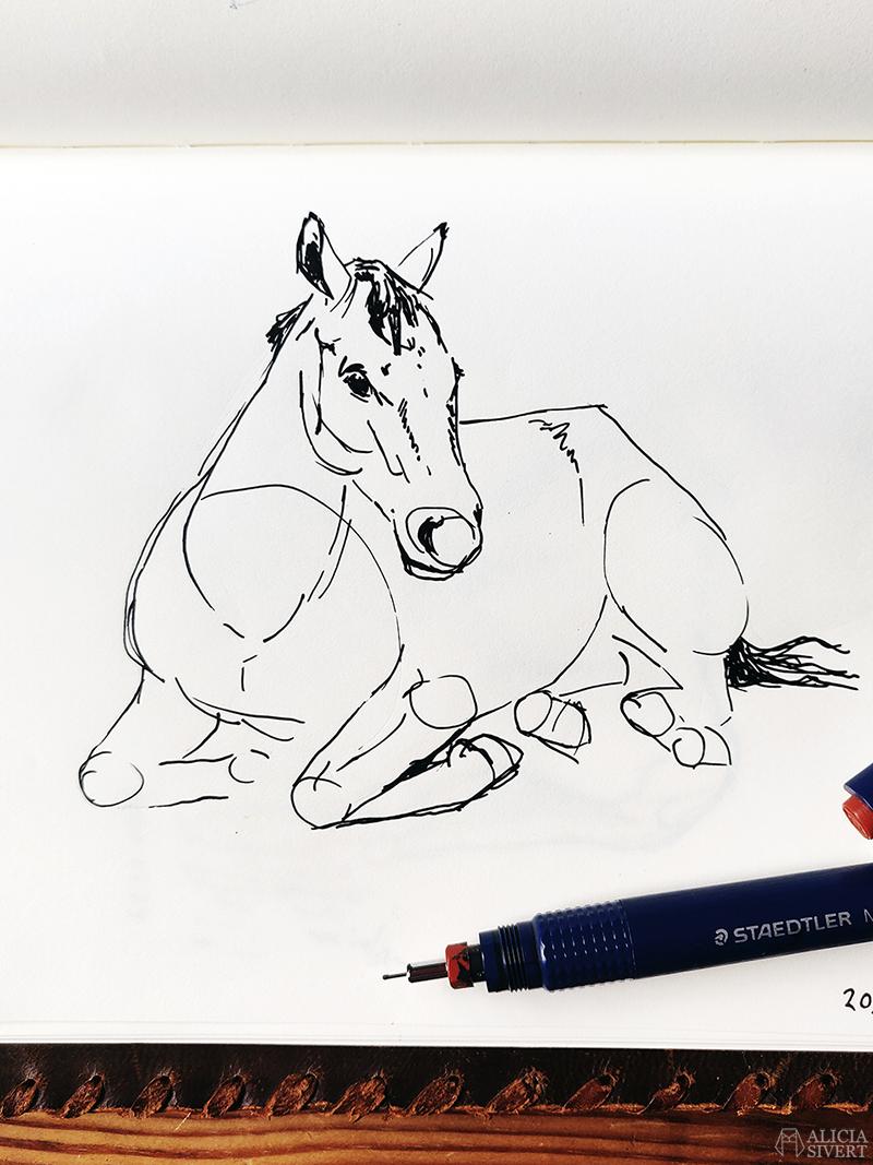 Teckning i ritbok av en häst som ligger ner. Tuschpenna Staedtler Mars Matic 0,5 syns i bild och har använts till teckningen. Den kreativa första semesterveckan - www.aliciasivert.se