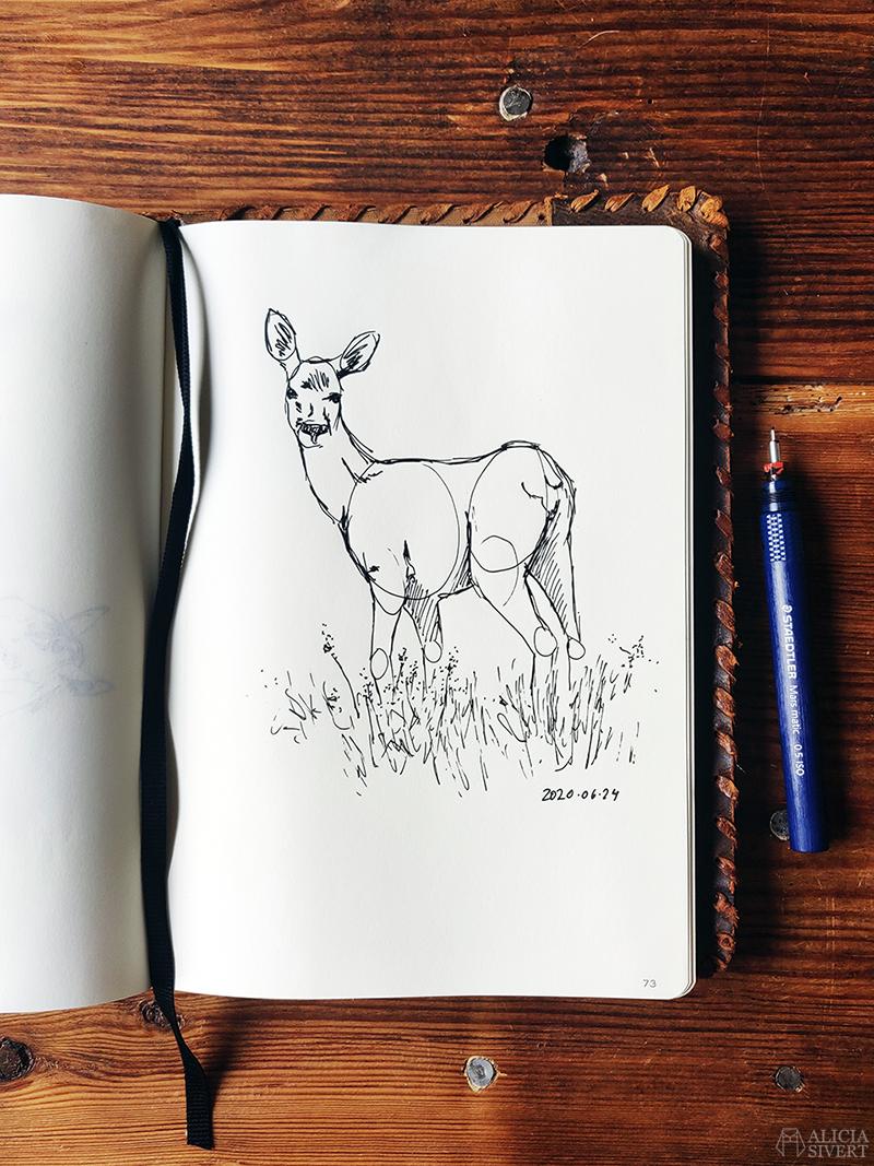 Teckning i ritbok av ett rådjur. Tuschpenna Staedtler Mars Matic 0,5 syns i bild och har använts till teckningen. Den kreativa första semesterveckan - www.aliciasivert.se