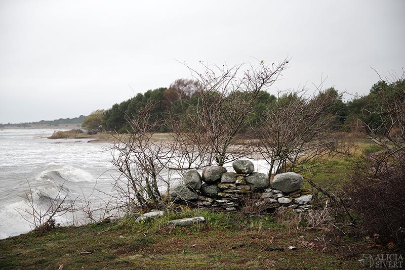 Höst på södra Gotland. Foto av Alicia Sivertsson. Alicia sivert aliciasivert aliciasivert.se sudret storsudret strand hav havet haugbjärgar stenvast vast mur stenar