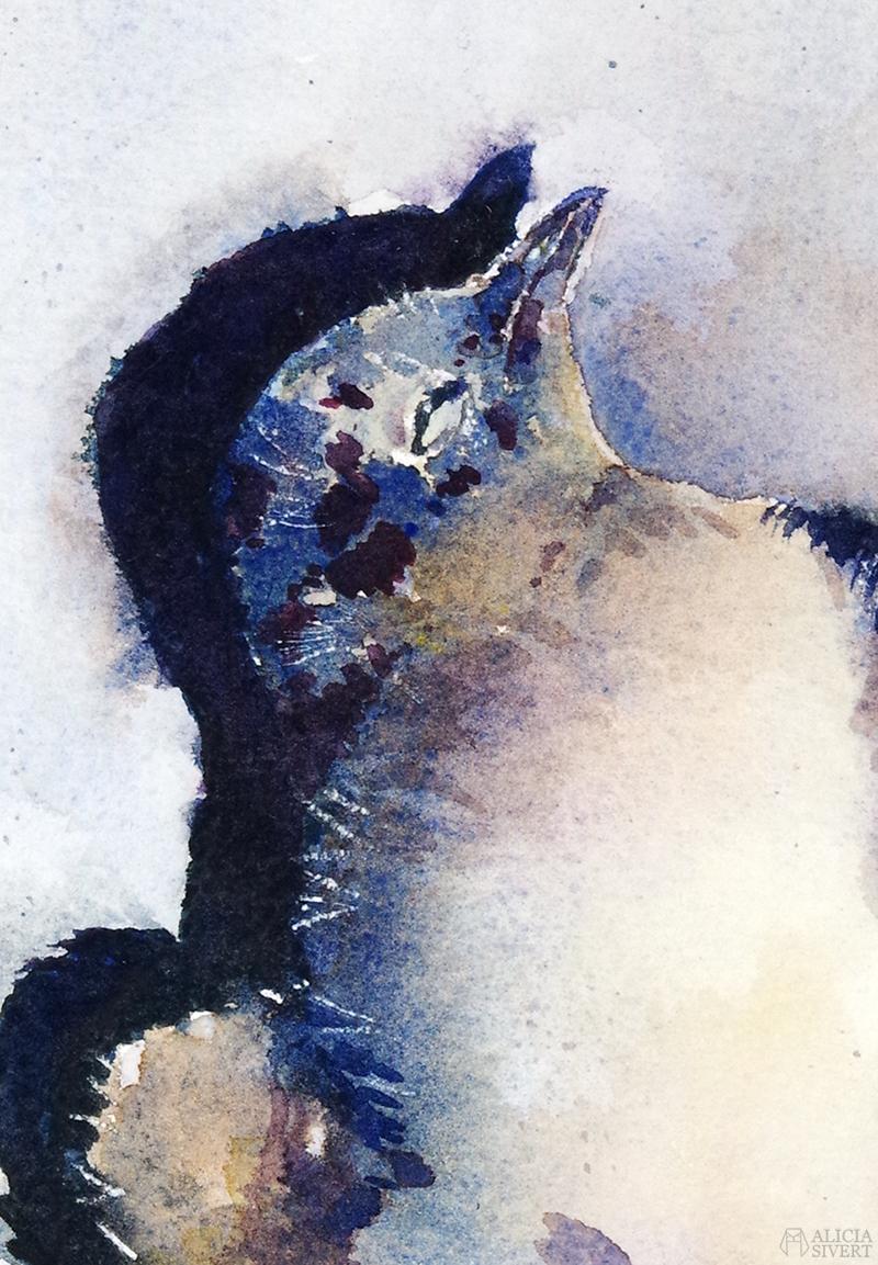 Första flygturen (detalj), akvarell av en död måsunge av Alicia Sivertsson 2019 - www.aliciasivert.se